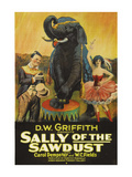 Sally of the Sawdust Posters