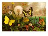 Butterflies Poster by F.W. Kuhnert