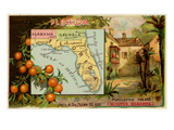 Florida Prints by  Arbuckle Brothers