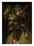 The Four Seasons Premium Giclee Print by Giuseppe Arcimboldo