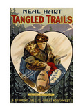 Tangled Trails Prints