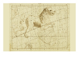 Leo the Lion Prints by Sir John Flamsteed
