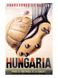 Hungaria Soccer Shoes Posters