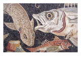 Fish Mosaic Prints