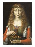 Girl with Cherries Poster von Giovanni Ambrogio De Predis