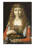 Girl with Cherries Print by Giovanni Ambrogio De Predis
