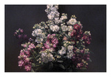 White and Purple Stock Prints by Henri Fantin-Latour