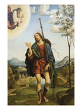 Saint Roch Print by Francesco Francia