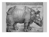 Rhinoceros Kunst af Albrecht Dürer