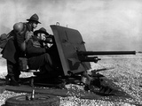 WWII England New Zealander Gun Crew Photographic Print by  Anonymous