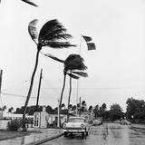 Hurricanes 1960 Fotografie-Druck von Harold Valentine