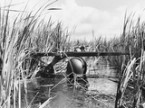 Vietnam War South Vietnamese Army Photographic Print by Horst Faas