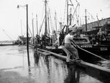 Hurricanes 1950-1957 Fotografisk trykk