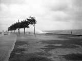 Hurricanes 1950-1957 Photographic Print by Harvey Valentine