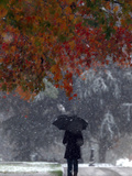 October Snow Photographic Print by Jacqueline Larma