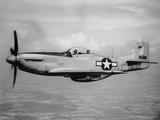 WWII U.S. Mustang Photographic Print by  Anonymous