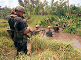 Vietnam Marshland Photographic Print by Associated Press