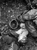 Vietnam War US Dead Photographic Print by Horst Faas