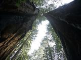 Rv Reisen Kalifornien Natur Photographic Print by Eric Risberg
