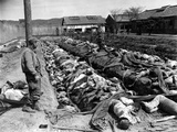 Korean War POW Casualties Photographic Print by James Pringle