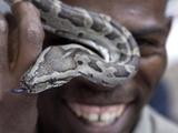 APTOPIX South Africa Yebo Gogga Photographic Print by Denis Farrell