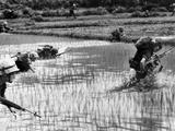 Vietnam War US Attack Photographic Print by John T. Wheeler