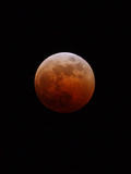 Lunar Eclipse Photographic Print by Alan Diaz
