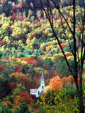 New England Foliage Photographic Print by Nancy Palmieri