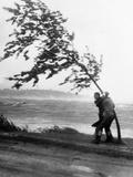 Hurricanes 1950-1957 Fotografie-Druck von  Anonymous
