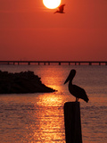 APTOPIX Pontchartrain Sunset Photographic Print by Ann Heisenfelt