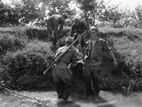 Korean War British Army Wounded Photographic Print by  GH
