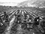Korean War Photographic Print by Jim Martenhoff