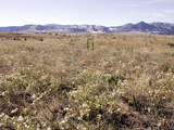 Rocky Flats Photographic Print by Ed Andrieski