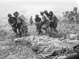 Vietnam War U.S. Casualties Photographic Print by Dang Van Phuoc