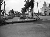 Hurricanes 1950-1957 Photographic Print by Earl Shugars