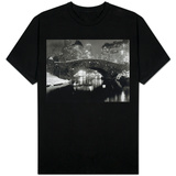 New York Pond in Winter T-Shirt