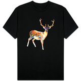 Deer Wearing Gym Socks T-shirts