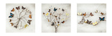 Ian Winstanley-Wings of Nature Prints