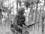 Vietnam War Ia Drang Battle Rescorla Photographic Print by Peter Arnett