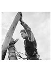 James Dean Hand on Post Poster von Frank Worth