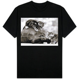 Two Young Kittens Playing with a Slow Moving Giant Tortoise, 1983 T-shirts