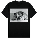 Bruce the Old English Bulldog Not Feeling His Best, November 1978 Shirts