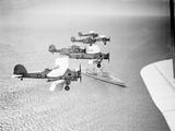RAF Swordfish Torpedo Bombers Photographic Print by  Anonymous