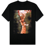 A Three Week Old Baby Giraffe with Its Mother at Whipsnade Zoo T-shirts