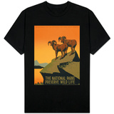 National Parks Shirts