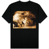 Lion Sleeping at Whipsnade Zoo Asleep One Eye Open, March 1959 T-Shirt