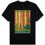 Giant Redwoods, Redwood National Park, California T-shirts