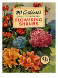 Mr Cuthberts Guide To Flowering, 1953, UK Giclée-tryk