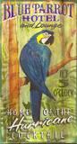 Blue Parrot Vintage Placa de madeira