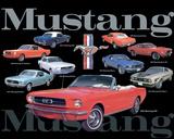 Mustang Collage Blechschild